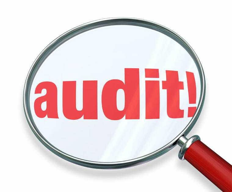 What Types of Businesses Are Specifically Targets by the IRS's Audit Team?